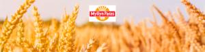 Myllyn Paras Mylläri työpaikkailmoitus kansikuva (1)