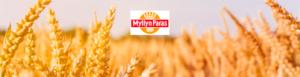 Myllyn Paras Mylläri työpaikkailmoitus kansikuva (2)